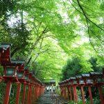 【京都1泊2日旅行】持ち物リスト11!パワースポット旅は最小限の荷物で!