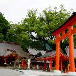 【週記】夏至でパワーアップ!夏越の大祓い!熊野古道から次のステージが始まった 2020/6/15-6/28