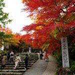 【神社仏閣】京都大原の紅葉一日巡り!ランチは素敵カフェ!大原の楽しみ方♪
