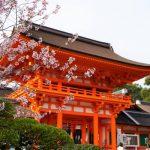 京都桜「上賀茂神社」の開花と見頃!最強パワースポットの桜も最高に美しい!