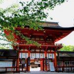 【パワースポット京都・下鴨神社】浄化と癒し!急に早朝参拝に行った理由とは