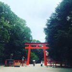 下鴨神社に朝参拝!暑い京都の夏の神社巡りは早朝がおすすめ!